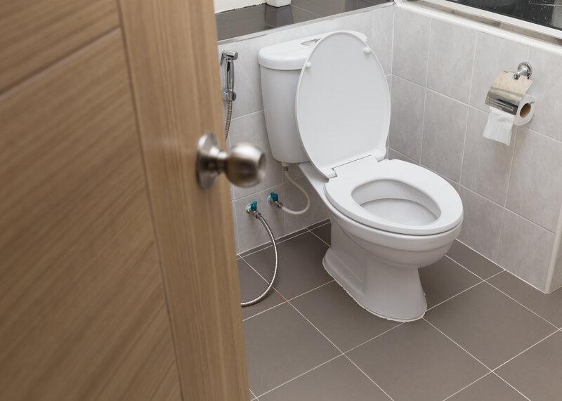 Toilet Inspection St Charles